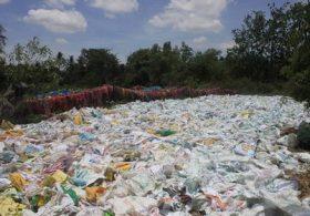Dành 10 triệu usd xây dựng nhà máy sản xuất túi nhựa phân hủy